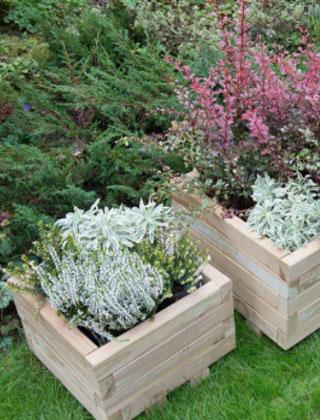 Planters & Greenhouses