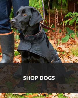 Shop Dogs