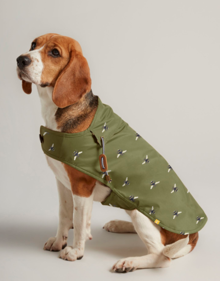 Joules Bee Print Dog Coat