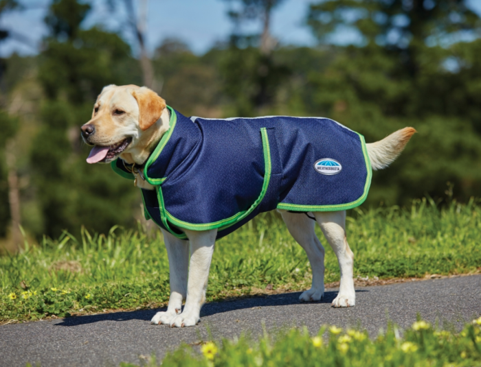 WeatherBeeta 1200D Parka Deluxe Dog Coat Navy/Lime