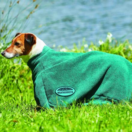 Weatherbeeta Dry Dog Bag Green