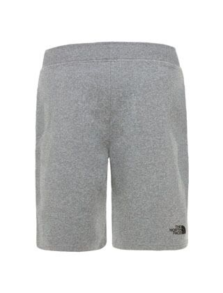 The North Face Mens Standard Short Grey Heat