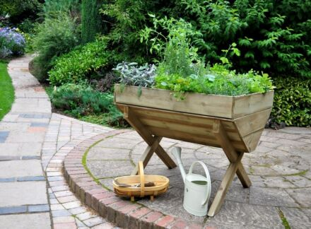 Forest Gardens Kitchen Garden Trough