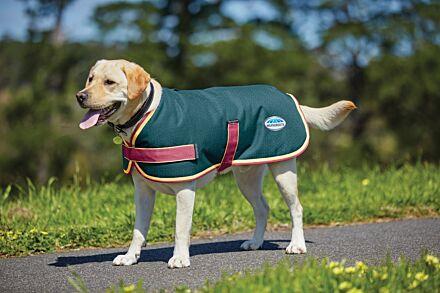 Weatherbeeta Parka 1200D Dog Coat Teal/ Cerise/ Yellow