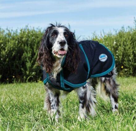 Weatherbeeta Parka 1200D Deluxe Dog Coat Black/ Turquoise