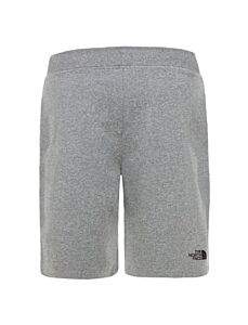 The North Face Mens Standard Short Grey Heat