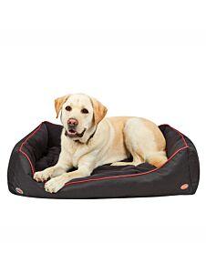 Weatherbeeta Therapy Dog Bed