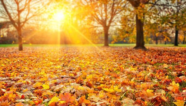 John Keats: To Autumn