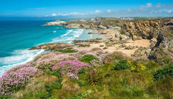 The Cornish Coastline: A Floral Extravaganza