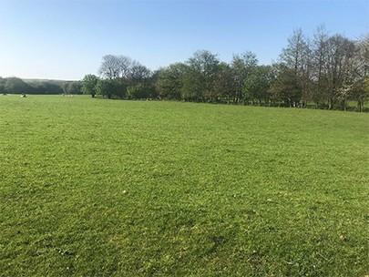 Griggs Field